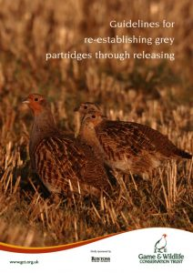 thumbnail of Guidelines-for-re-establishing-grey-partridges-through-releasing
